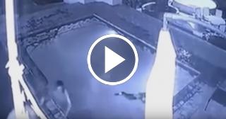 Una mujer es atacada por un cocodrilo en la piscina de su casa
