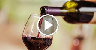 Pinar del Río ya tiene su propia Casa del Vino ¡Descúbrela!