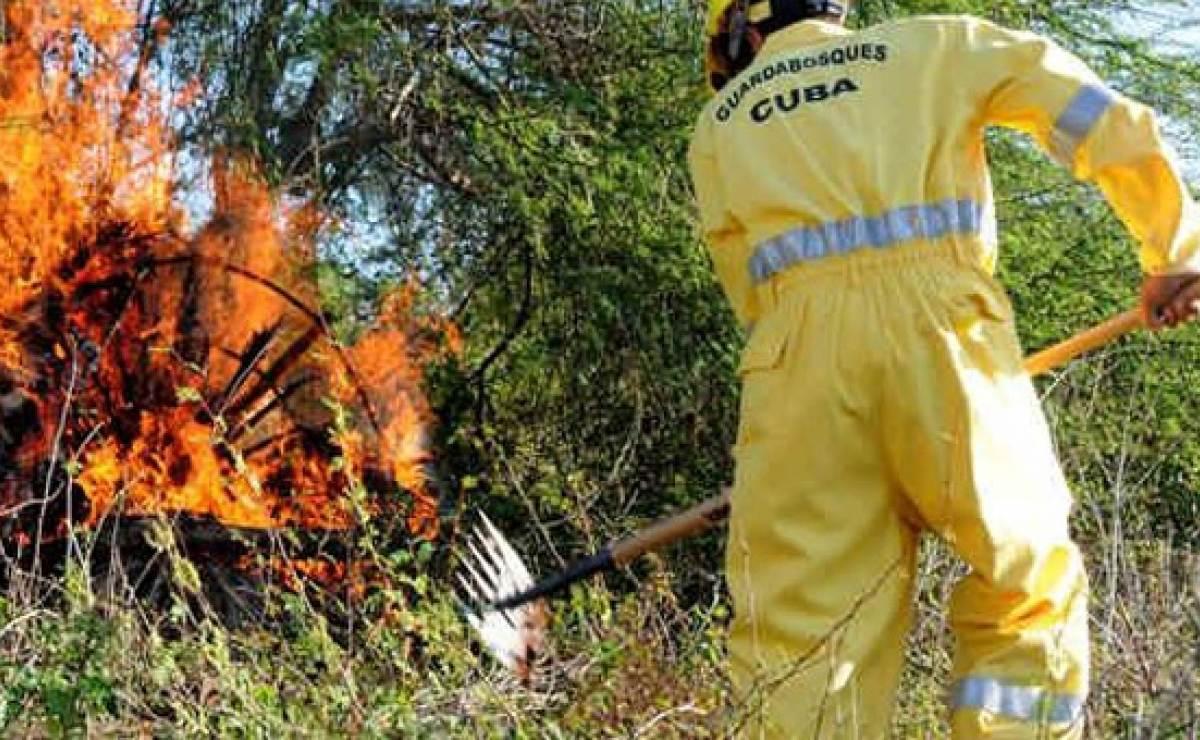 Cuba sufrió más de 350 incendios forestales en 2017