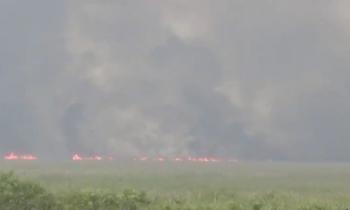 Más de 18.000 hectáreas quemadas en los Everglades por un incendio causado por un rayo