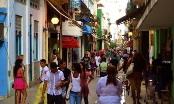 La zoología en el habla cubana