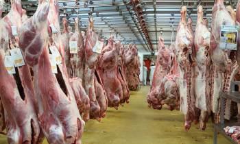 Empresa paraguaya exportará 50 toneladas mensuales de carne a Cuba