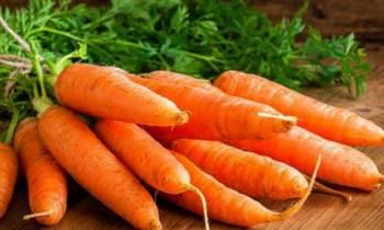 """Cuba logra variedad de semillas de zanahoria """"autóctonas"""""""