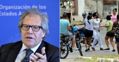 Luis Almagro: Las Damas de Blanco se enfrentan a